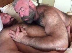 Ursos peludos gostosos transam no porno